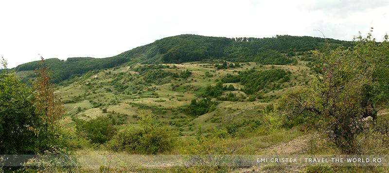 Măgura Stânii (716 m)