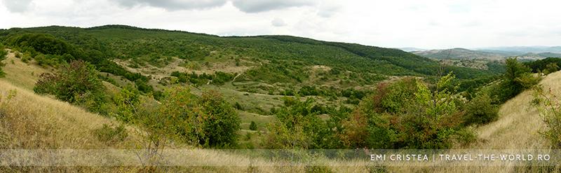 Panoramă cu Valea Druii