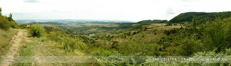 Drumul de care, spre Zalău, pe Valea Stânii
